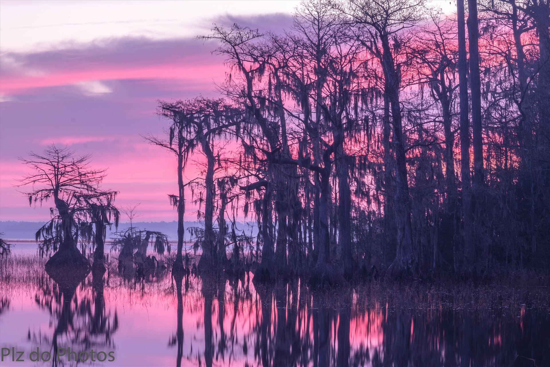 Morning Has Broken - Sunrise over the Lake Waccamaw at the dam. by Patricia Zyzyk