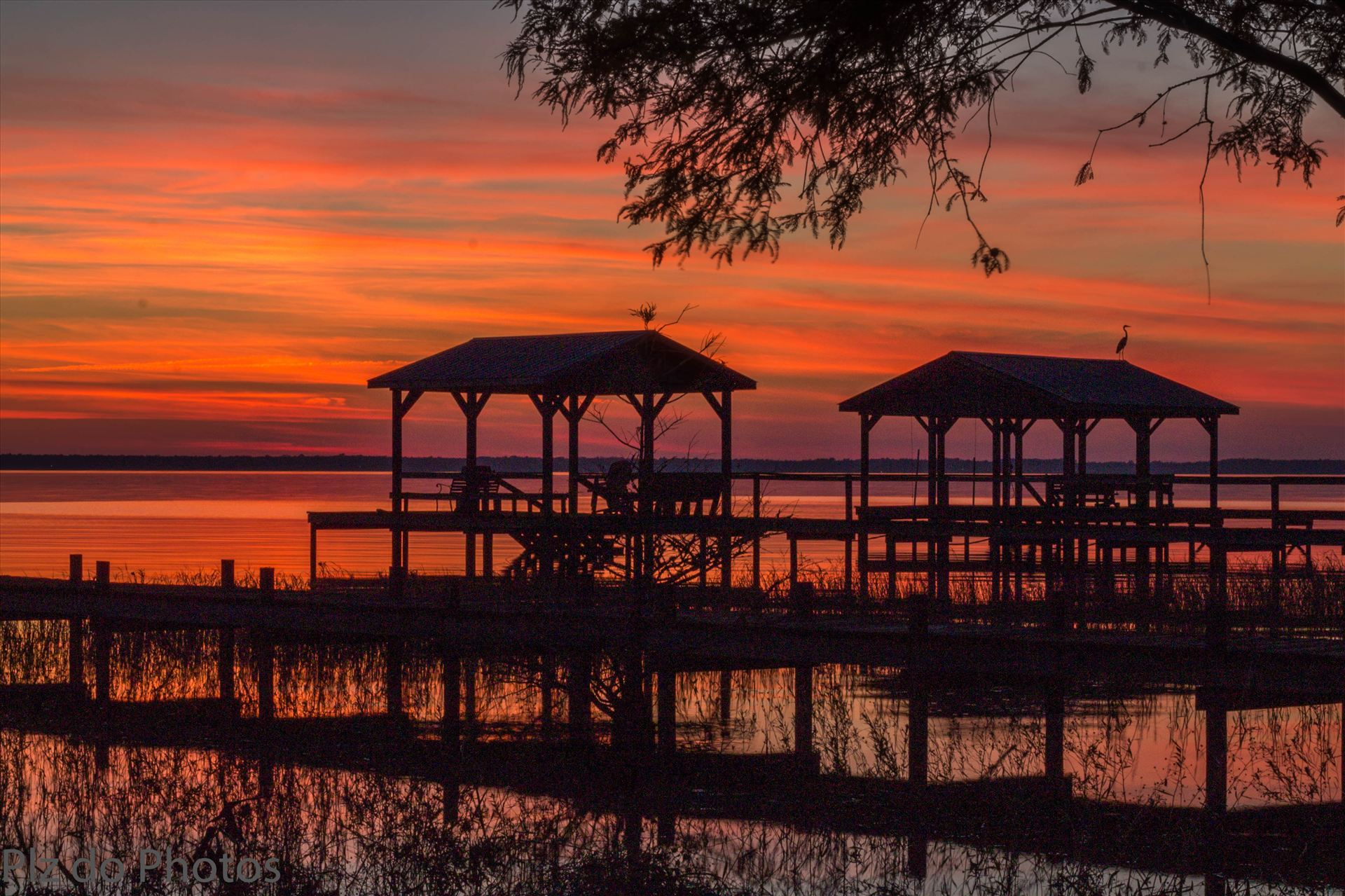 Autumn Sunset (1 of 1).jpg - Autumn sunset in Lake Waccamaw, NC. by Patricia Zyzyk