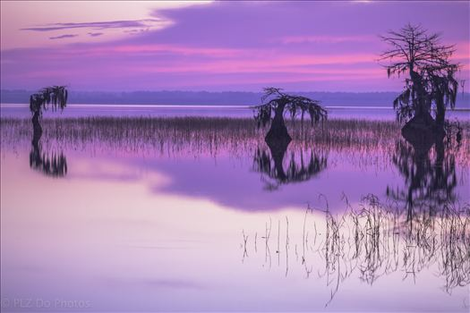 Sunrise Peace-.jpg - Sunrise over the Lake Waccamaw at the dam.